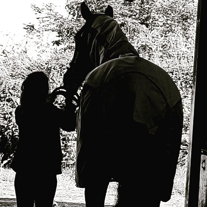 Black and white image of a tall, dark horse with a considerably shorter human handler