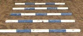 a line of 5 blue and whitet trot poles in a straihjt line