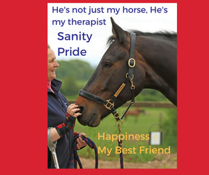"A picture of mr with Alfie, my hand touching his muzzle. with the words ""He's not just my horse, he's my therapist, sanity, pride, happiness, my best friend"