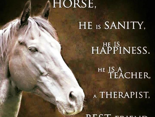 #EquestrianBlogtober Day 22: Monday Motivation, motivational quotes.