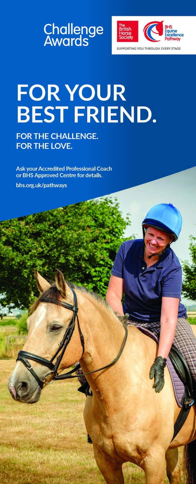 British Horse Society Best Friend