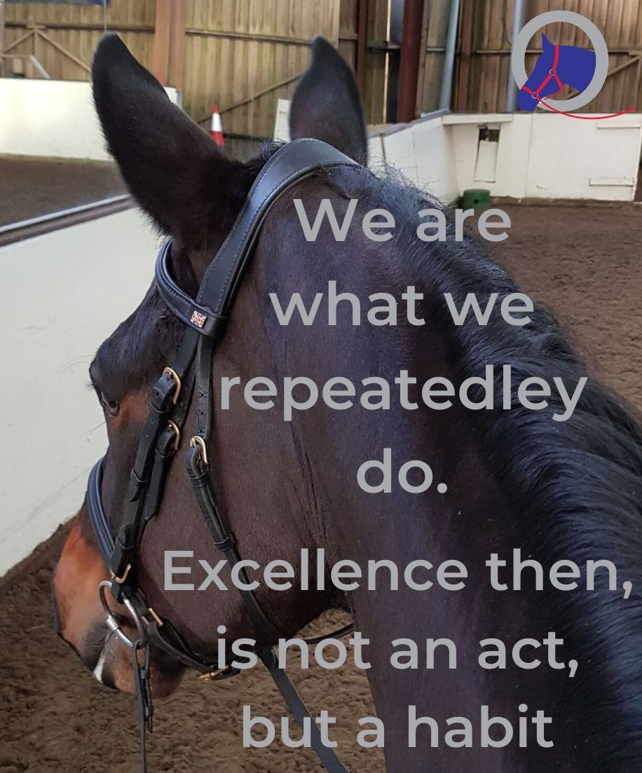 "Picture of a bay horse's head taken from the saddle. Text added says ""We are what we repeatedley do.Excellence then, is not an act, but a habit."