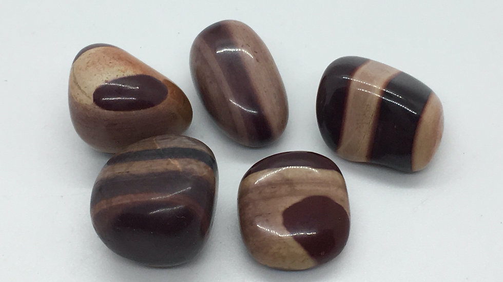 Australian Zebra Stone