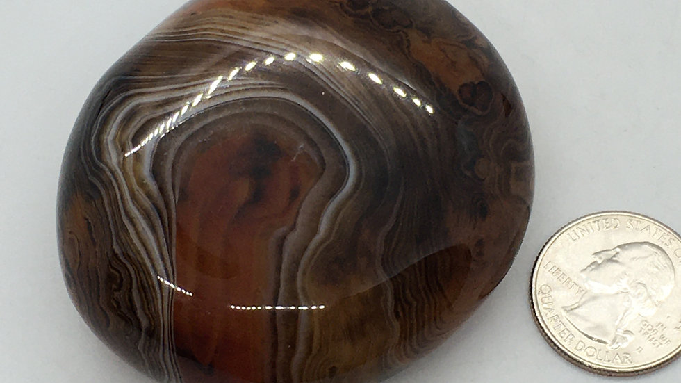 Silk Agate Palm Stone from Madagascar