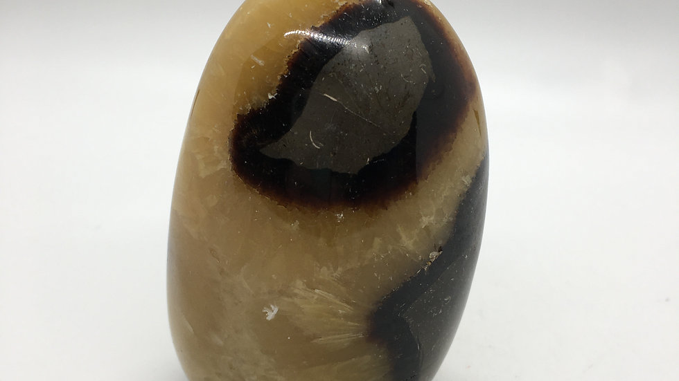 Septarian Free Form