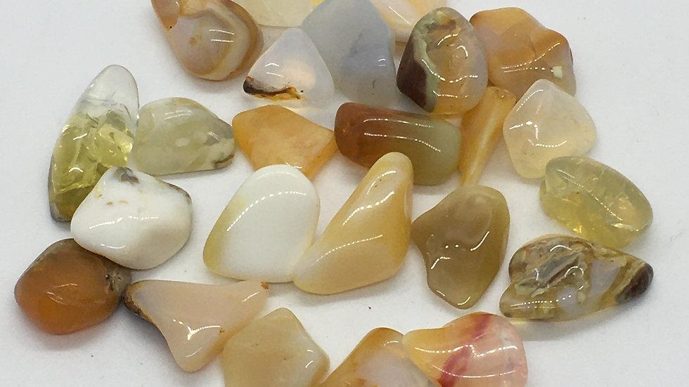 Nevada Golden Opal