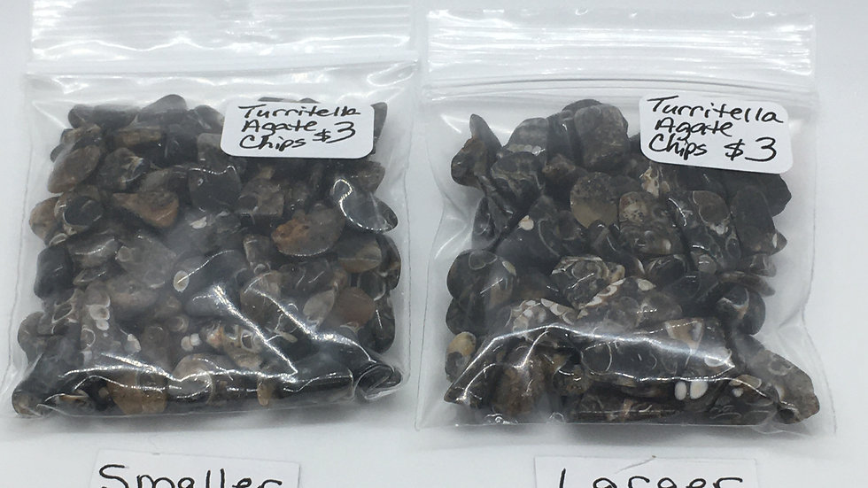 Turritella Agate Chips
