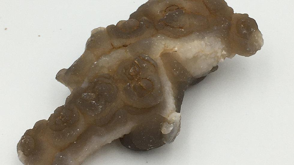 Elemental Chalcedony Concretion