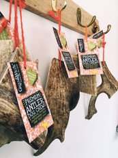Tasty antlers, for sale in our shop