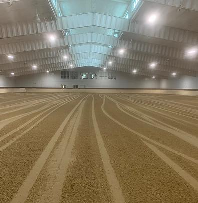arenagreen indoor 2.webp