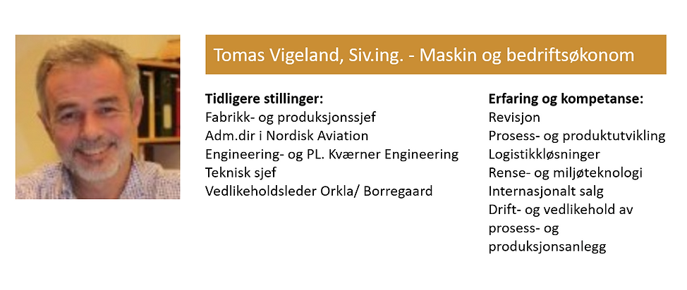 Tomas Vigeland.png