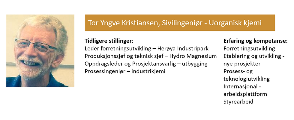 Tor Yngve Kristiansen.png
