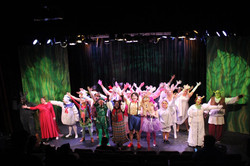 Shrek at Rhino Theatre