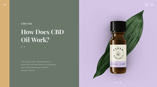 Blog Article on CBD online store with title: How Does CBD Oil Work?