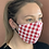 Thumbnail: Picnic In the Park mask & filter