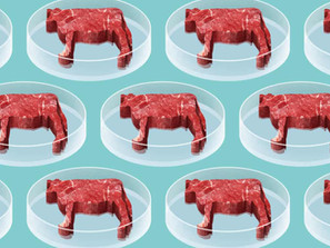 Carne artificiale o in provetta: miti e leggende che è ora di sfatare!