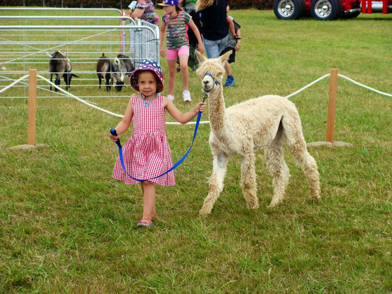 Tauranga A&P Show - lots of happy children...