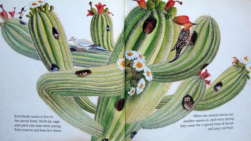 cactus hotel.jpg