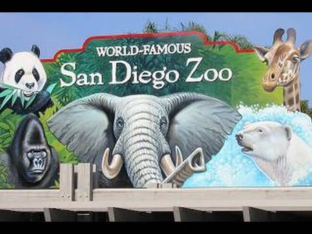We're Going to the Zoo, Zoo, Zoo