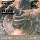 Reflections on God's Creation