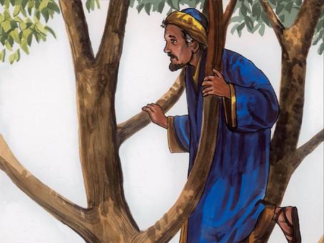 """""""Jesus Saw Zacchaeus"""""""
