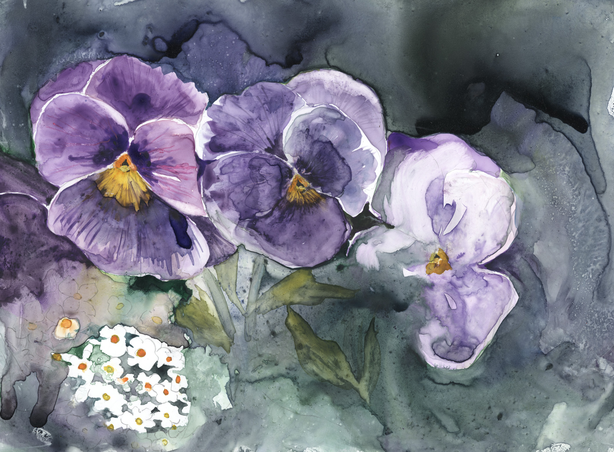 Pansies in Rain