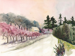 Niagara Orchard