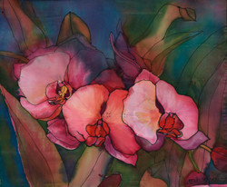 Orchids on Silk