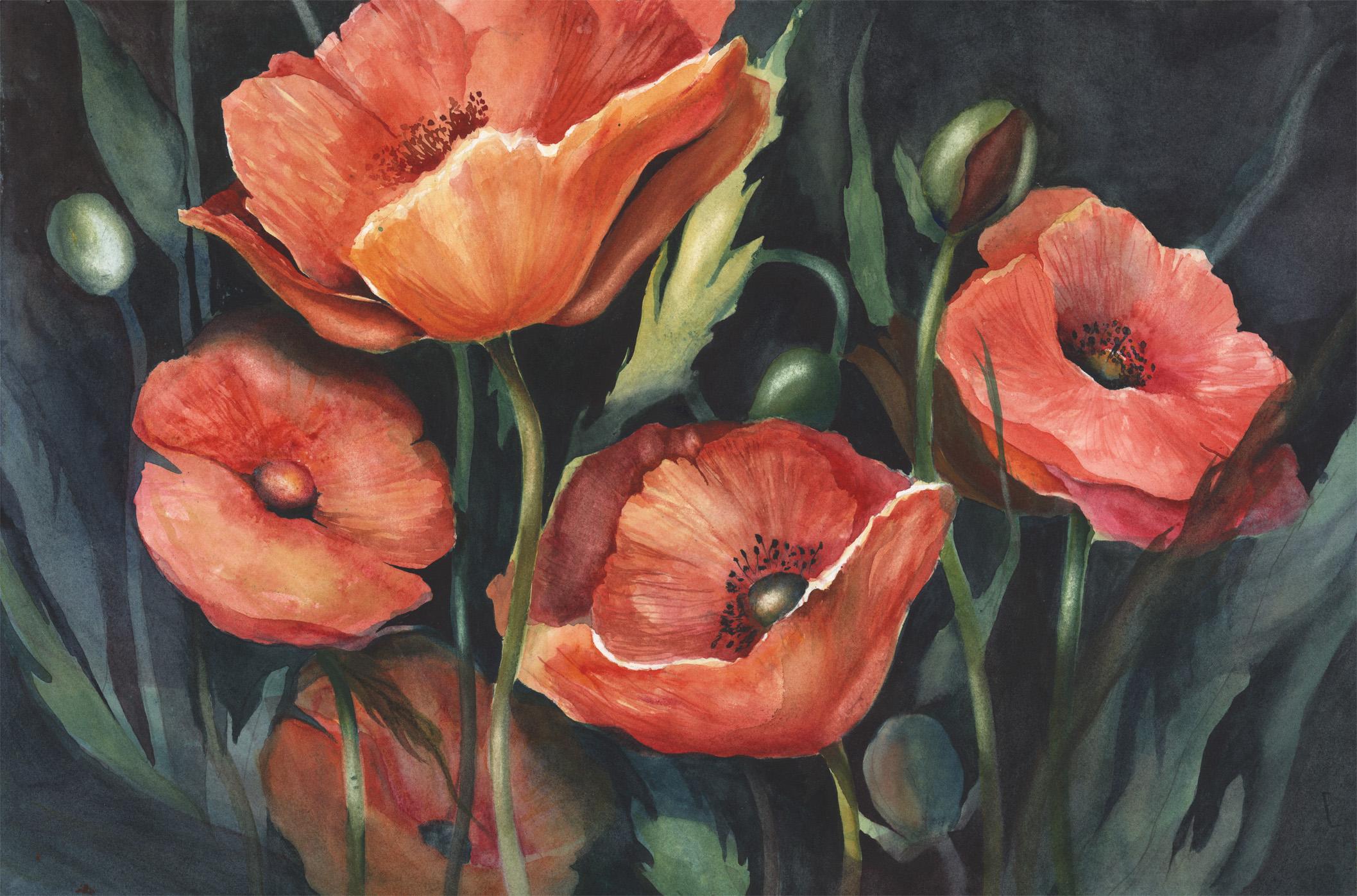 Poppy Passion