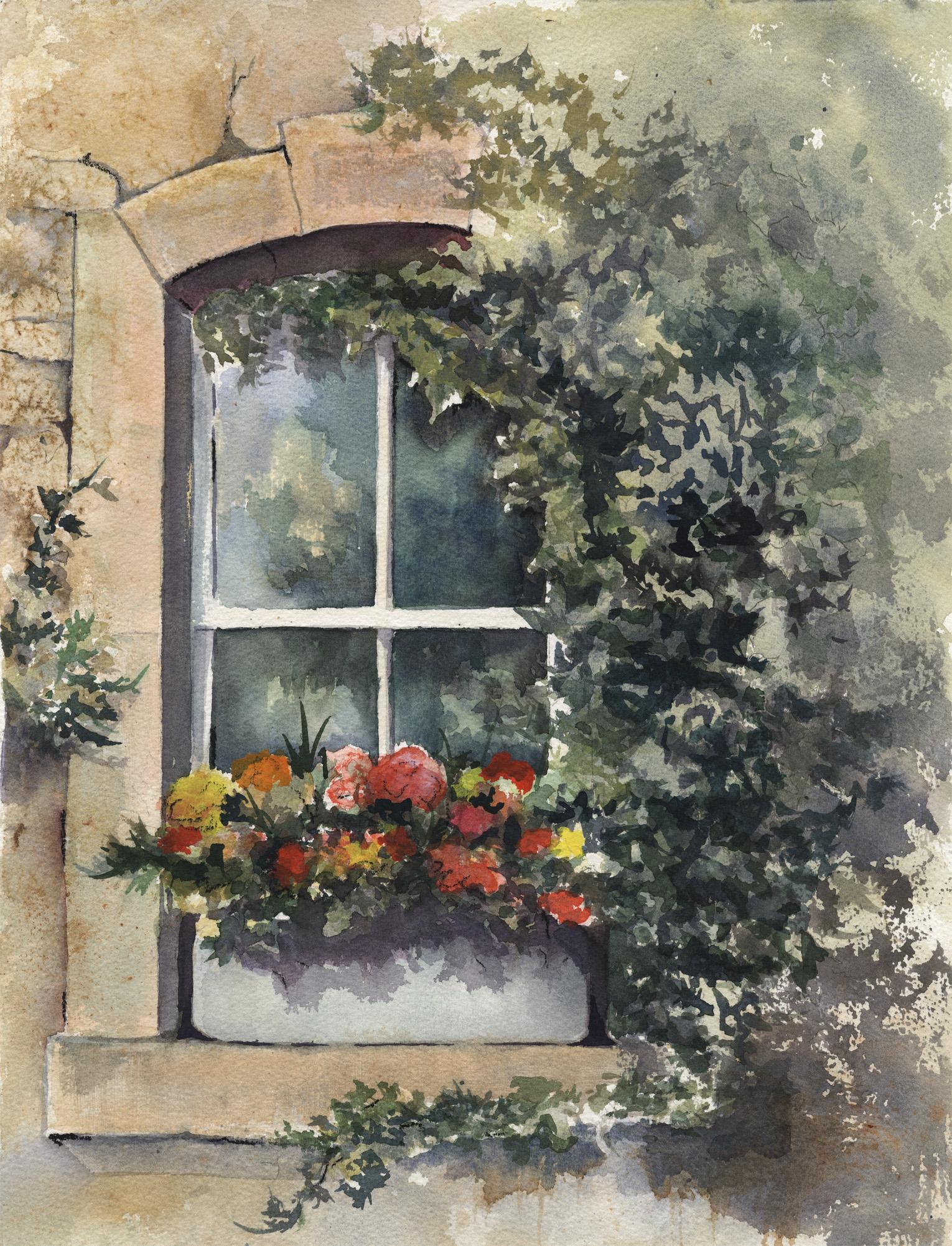 Ivied Window