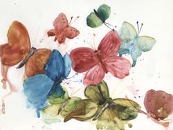 Butterflies in Rain