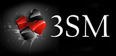 3SM logo new smaller.jpg