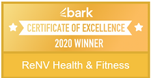certificate of exellence- renv fitness.P
