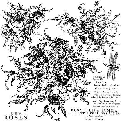 "Produktinformationen ""Decor Stempel ""Rose Toile"" - Iron Orchid Designs (IOD)""  D"