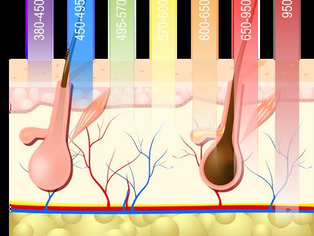 Efeitos da Luz visível sobre a Pele
