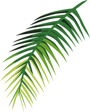 Tropical Leaf   _edited_edited.png