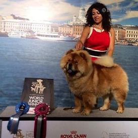 KING OF EGYPT DE LOS PERROS DE BIGO.jpg