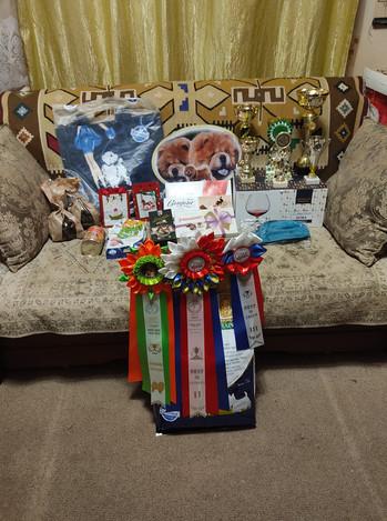 Призы и подарки с выставок во Владимире