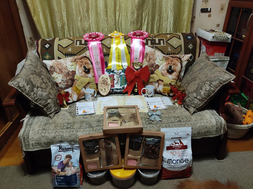 Призы и подарки после выставок в Иваново
