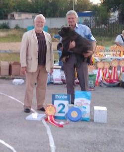 КЛОТО Донна Дива - 8,5 месяцев