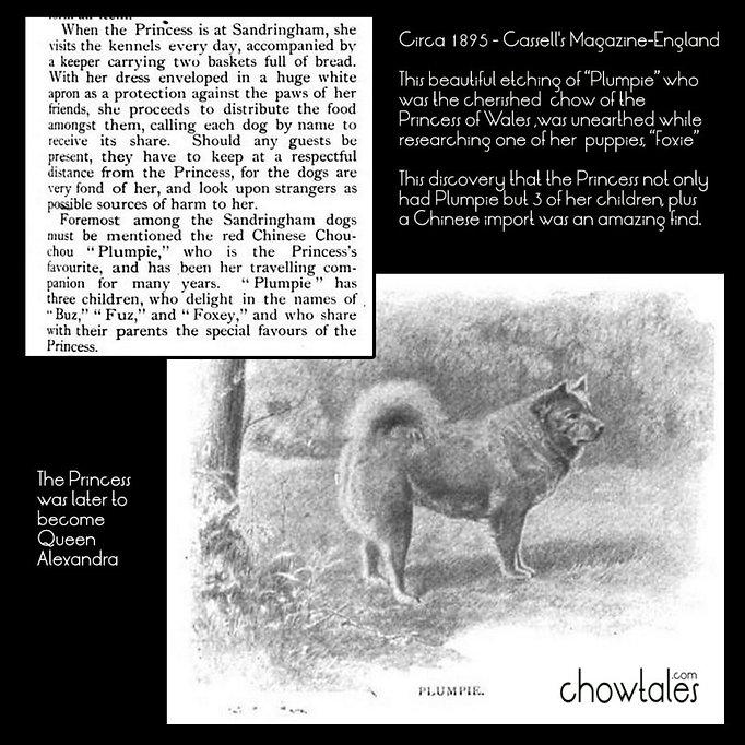Примерно 1895 год – Газетный Журнал Англия