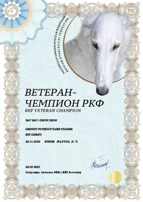 Документ ВЧРКФ.jpg