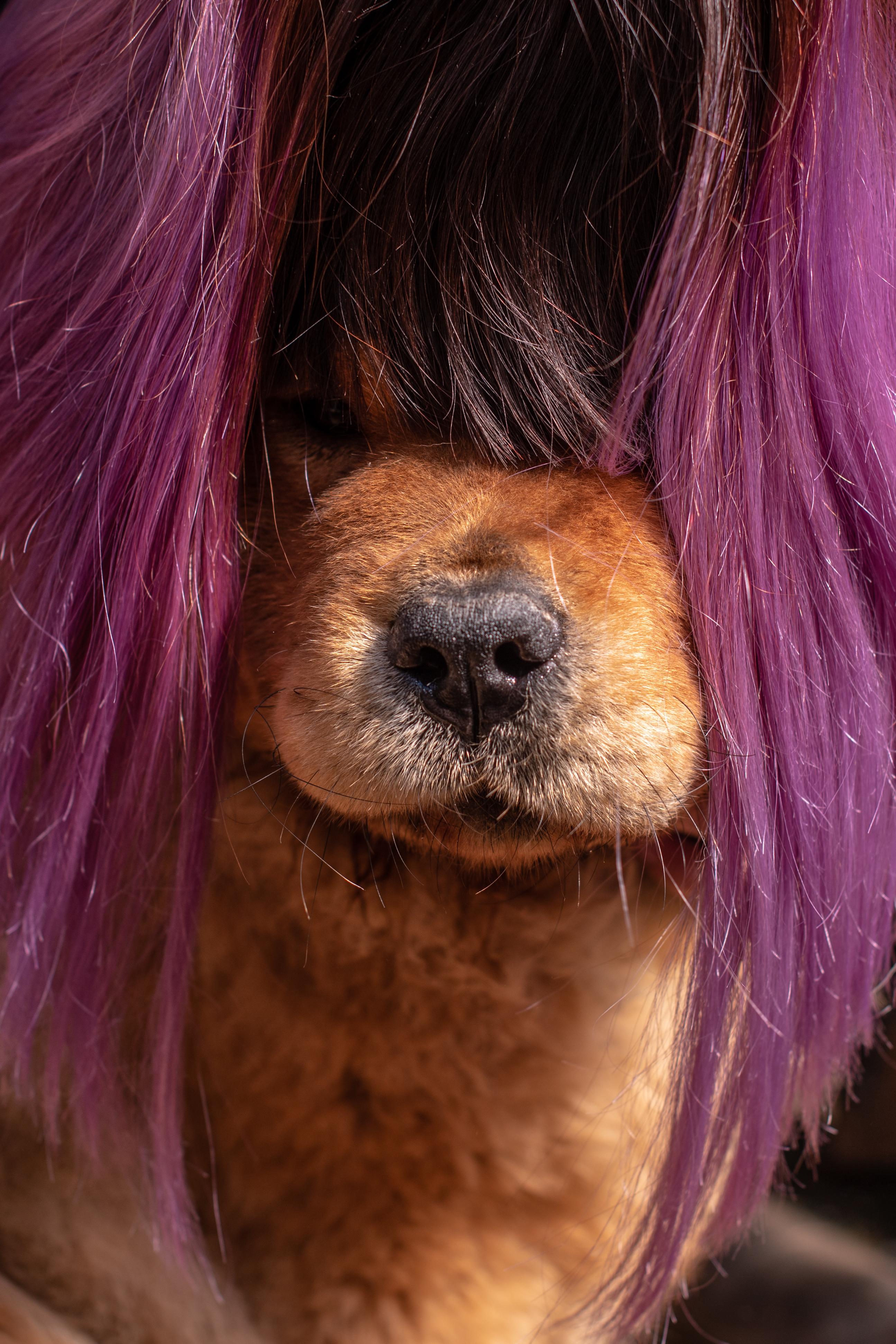 Цвет волос точно к лицу!