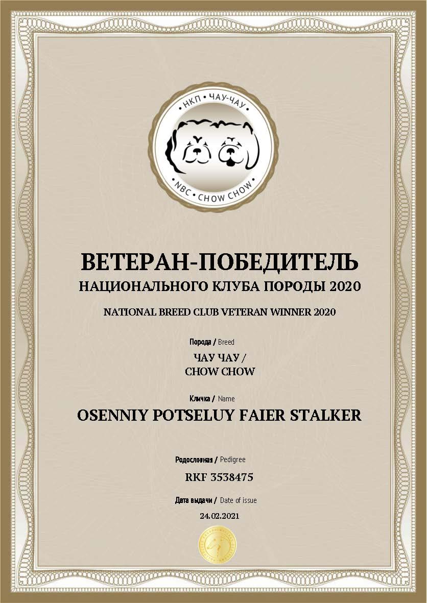 Документ Ветеран победитель клуба 2020