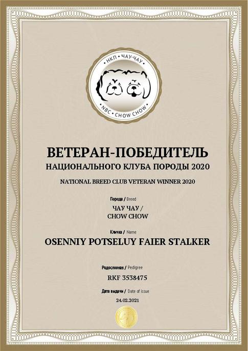 Документ Ветеран победитель клуба 2020.j