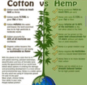 Cotton vs Hemp: Cotton needs twice as much land as Hemp. Cotton needs 9.758L to grown 1Kg of fibre, cotton pollutes the water and leaves the land scorched due to its high pesticide & herbicide needs, Cotton account for 25% of all pesticides use worldwide, Organic cotton lessens the blow, although it is not nearly as sustainable as Hemp.  Hemp produces twice as much fibre per acre.....
