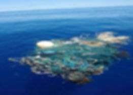 Shows the surface of the Great Pacific Garbage patch in the Pacific ocean - just bad pollution