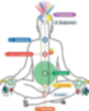 Subtle System showing the qualities(in English) of the chakras/ energy centers, Kundalini, Parasympathetic Nervous System.