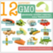 12 common GMO foods: potatoes, soy, corn, squash, canola oil, cotton oil, salmon, dairy, peas, tomatoes, rice, hawaiian papaya, squash.