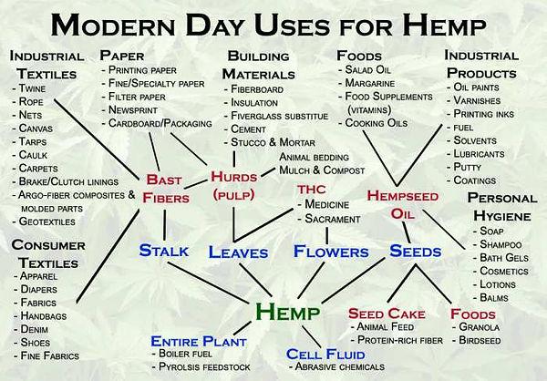 hemp-uses (1).jpg